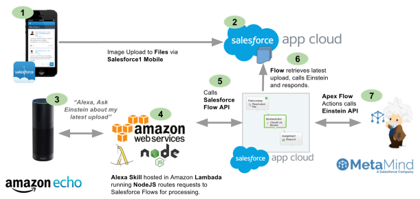 Salesforce API | Andy in the Cloud